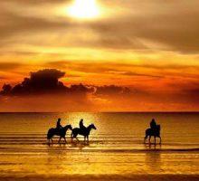 Inyoni Horseriding